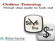 Best Informatica Online Training